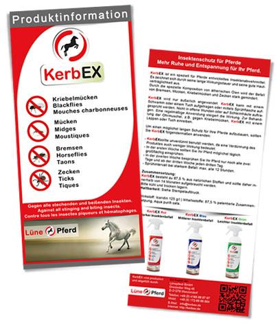 Flyer KerbEx